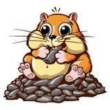 Hamstervektorillustration Arkivbilder