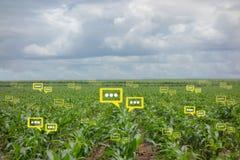 Han bubblar pratstunddata avkännaen vid futuristisk teknologi i smart jordbruk Fotografering för Bildbyråer
