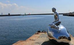 Han den manliga sjöjungfrun Fotografering för Bildbyråer
