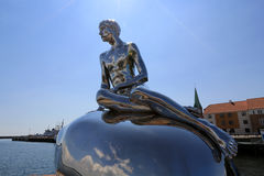 Han den manliga sjöjungfrun royaltyfri fotografi