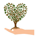 Han holding heart shape tree with leafy branches. Hand holding a tree with leafy branches  illustration Stock Photos