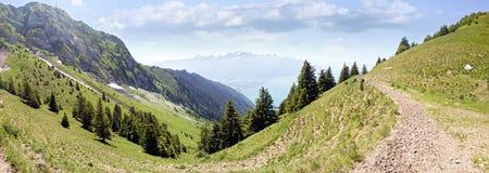 Han Rochers de Naye är ett berg av de schweiziska fjällängarna som förbiser sjöGenève Arkivfoto