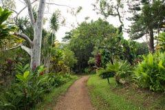 Hana, Hawai fotografia stock libera da diritti