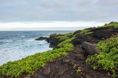 Hana, Hawaii foto de archivo