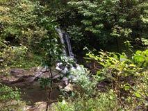 Hanakapiai strumień na NaPali wybrzeżu wzdłuż Kalalau śladu na Dżdżystym i Mglistym dniu na Kauai wyspie, Hawaje Fotografia Royalty Free