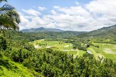 Hanalai dolina uprawia ziemię uprawy w Hawaje Fotografia Royalty Free