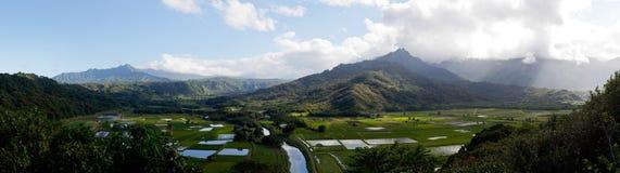 hanalei考艾岛全景谷 免版税图库摄影