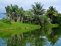 Hanalei River, Kauai Stock Images