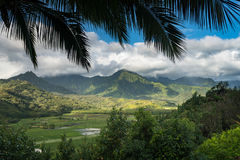 Hanalei-Tal von Princeville übersehen Kauai Lizenzfreies Stockfoto
