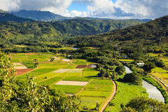 Hanalei Valley Royalty Free Stock Images