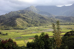 Hanalei Valley, Kauai, Hawaii Stock Photo