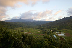 Hanalei Valley Lookout Royalty Free Stock Photography