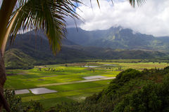 Hanalei Valley Lookout Royalty Free Stock Photo