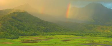 Hanalei Valley Rainbows, Kauai. A series of early rainbows in early morning sunlight over Hanalei Valley, captured in Kauai in the Hawaiian Islands Royalty Free Stock Photo