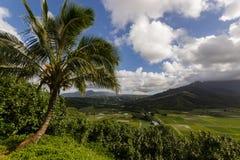 Hanalei Vally na ilha de Kauai, Havaí com um pa bonito foto de stock