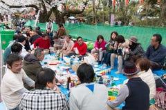 Hanami党在上野公园,东京 免版税图库摄影