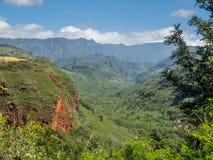 Hanapepe dal på ön av Kauai Royaltyfria Foton