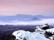 Hanar som täckas med nytt pulver, snöar, den dimmiga dalen stenig rock Arkivbild