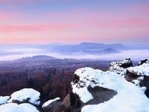 Hanar som täckas med nytt pulver, snöar, den dimmiga dalen stenig rock Royaltyfria Foton
