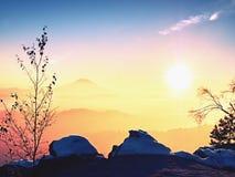 Hanar som täckas med nytt pulver, snöar, den dimmiga dalen stenig rock Arkivbilder