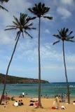 Hanauma海湾,奥阿胡岛,夏威夷的储蓄图象 库存照片