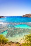 Hanauma bay, Oahu, Hawaii Royalty Free Stock Photo