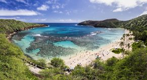 Hanauma Bay, Oahu, Hawaii. Snorkelling at the coral reef of Hanauma Bay, a former volcanic crater, now a national reserve Royalty Free Stock Image