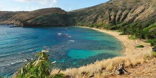Hanauma bay on Oahu's south Royalty Free Stock Image