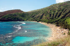 Hanauma Bay Reef Honolulu Hawaii Royalty Free Stock Image