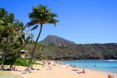 Hanauma bay Royalty Free Stock Images
