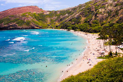 Hanauma fjärd, mest bra ställe för att snorkla i Oahu, Hawaii royaltyfri foto