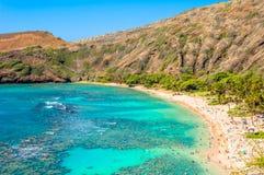 Hanauma fjärd, Oahu, Hawaii Arkivfoto