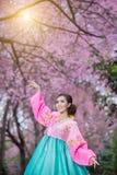 Hanbok: den traditionella koreanska klänningen och de härliga asiatiska flickawina Arkivfoto