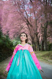Hanbok: the traditional Korean dress and beautiful Asian girl wi Royalty Free Stock Photo