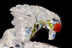 Hanche glaciale Image stock
