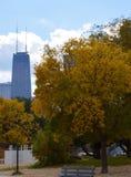 Hancock construisant en automne Images stock