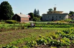 Hancock, mA: Shaker Village Gardens y granero redondo Imagenes de archivo