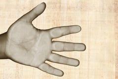 hand över papyrusen Arkivfoto