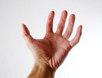 Hand - 1 Stock Photography