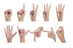 Hand. Counting men hands (0 to 9) ,Isolated on white background Royalty Free Stock Images
