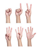 Hand. Counting men hands (0 to 5) ,Isolated on white background Stock Photos