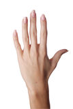 Hand. Ond hand in isolate background royalty free stock photos