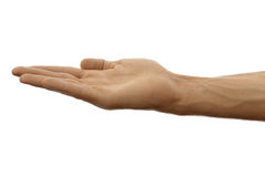 Hand. As if holding something isolated on a white background stock photos