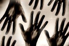 Hand Stock Photography