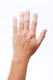 Hand Royalty Free Stock Photo
