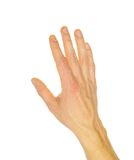 Hand. Extended hand for help on a white background Royalty Free Stock Photo
