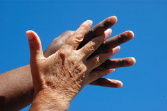 hand Arkivbild