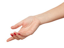 The hand Royalty Free Stock Image
