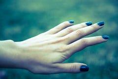 Hand Royaltyfri Fotografi