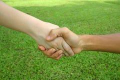 Hand 4. Shaking hands stock image